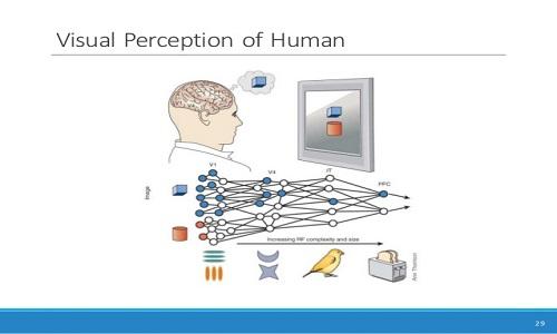 تفاوت درک انسان و یادگیری عمیق