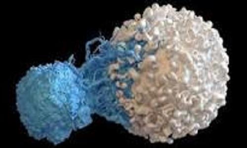 درمان سرطان با سلول T