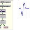پروژه علوم اعصاب برای spike sorting