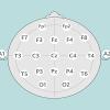 دوره ی پردازش سیگنال EEG