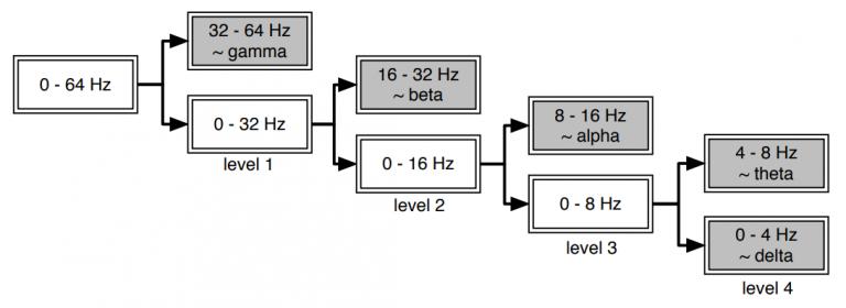 پردازش سیگنال مغزی(eeg) در حوزه ویولت