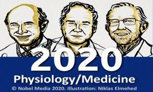 جایزه نوبل پزشکی 2020