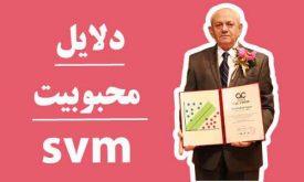 دلایل محبوبیت ماشین بردار پشتیبان(svm)