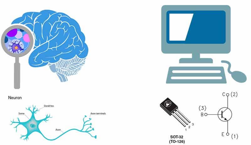 تفاوت مغز انسان با کامپیوتر