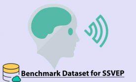 پایگاه داده ssvep