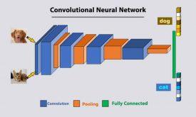 دوره جامع و پروژه محور شبکه عصبی کانولوشنی