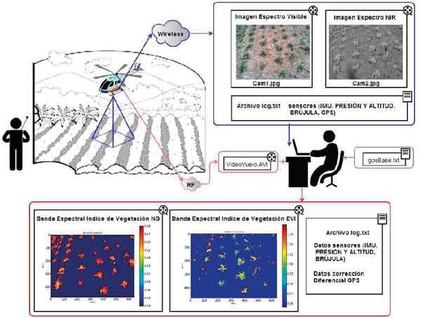 کاربرد پردازش تصویر در کشاورزی